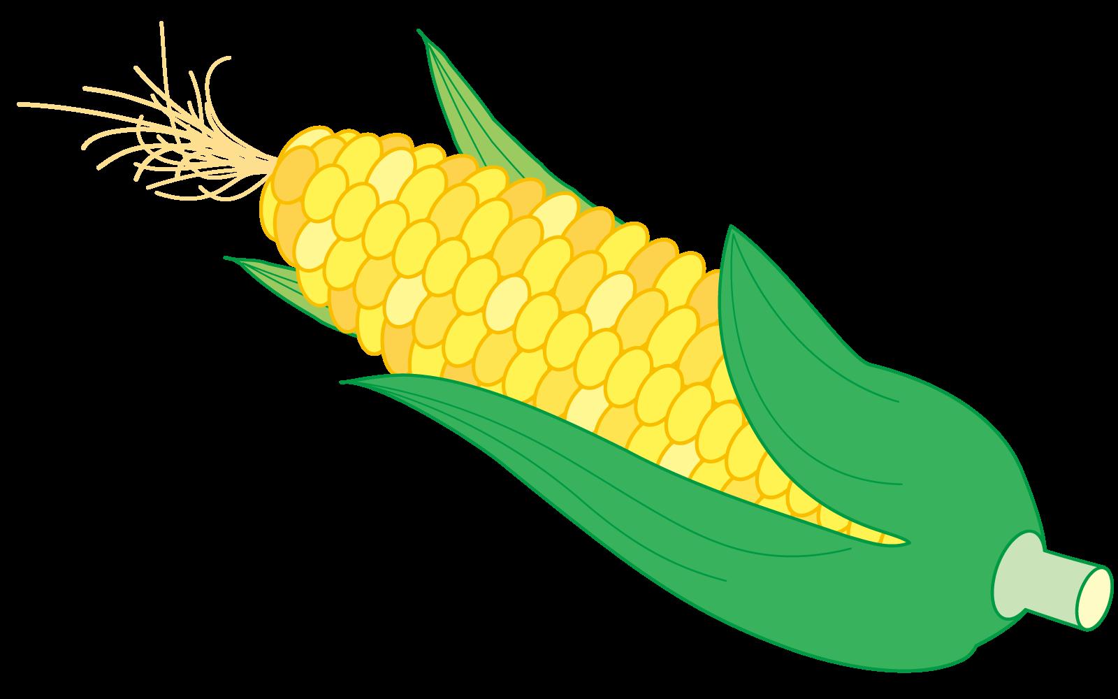 トウモロコシイラスト